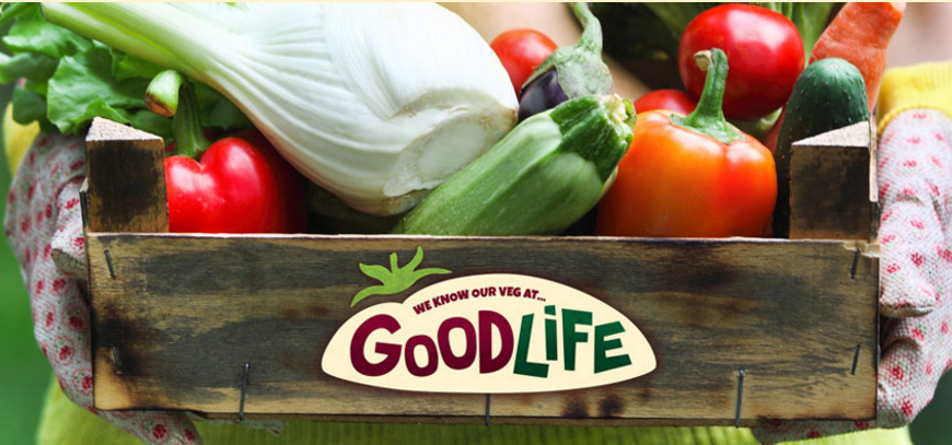 Goodlife Vegetarian Food Review