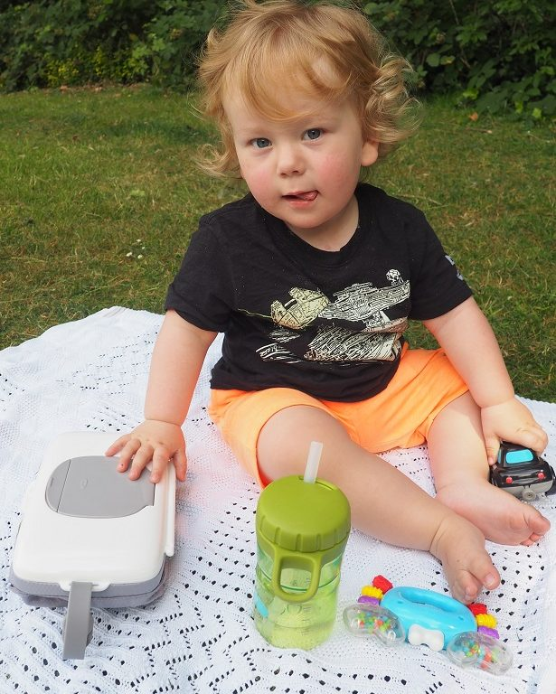 5 tips to have a great family picnic