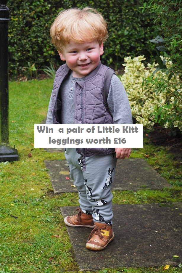 Baba Fashionista with Little Kitt, giveaway, Frenchie Mummy