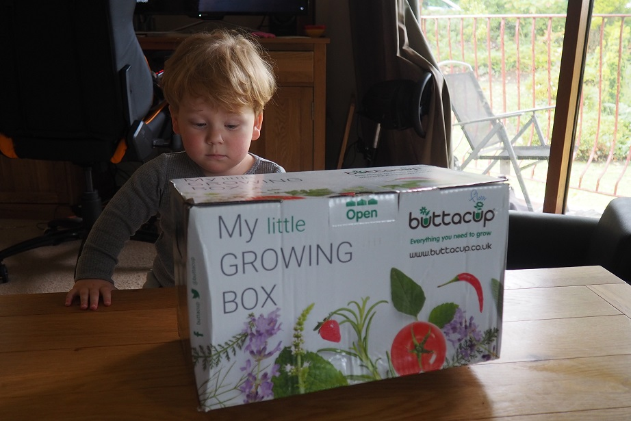 Buttacup Grow Kit Review . giveaway, children gardening