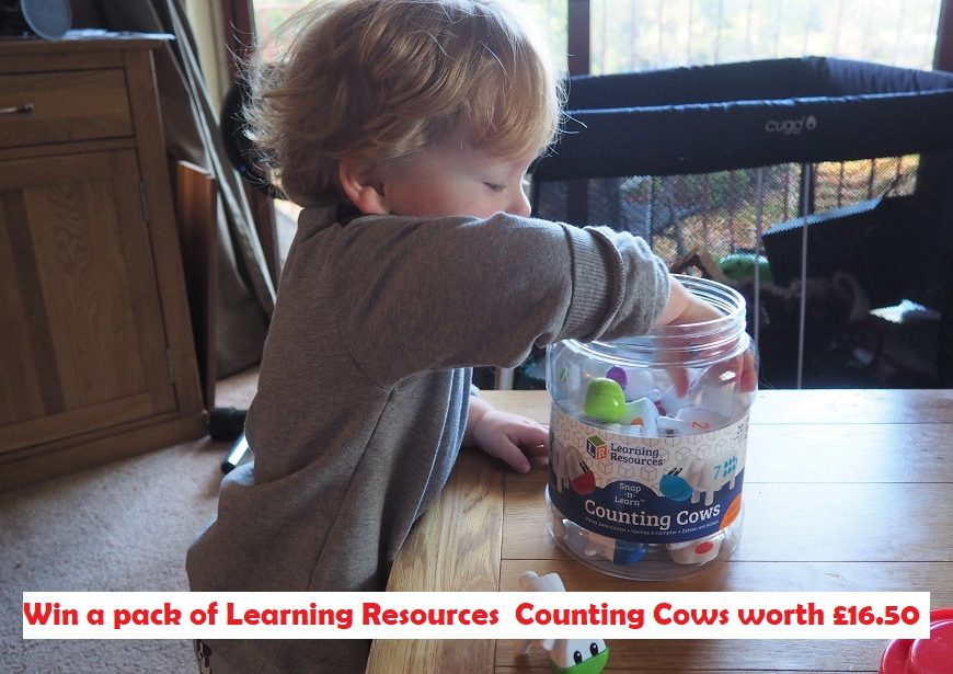 Learning Resources Counting Cows Review