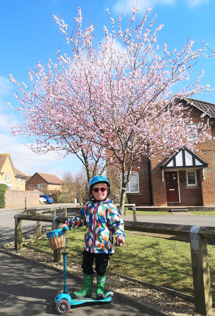 March 2021, Kent Life, Country Life, Family Time, Spring 2021, the Frenchie Mummy, Scooting