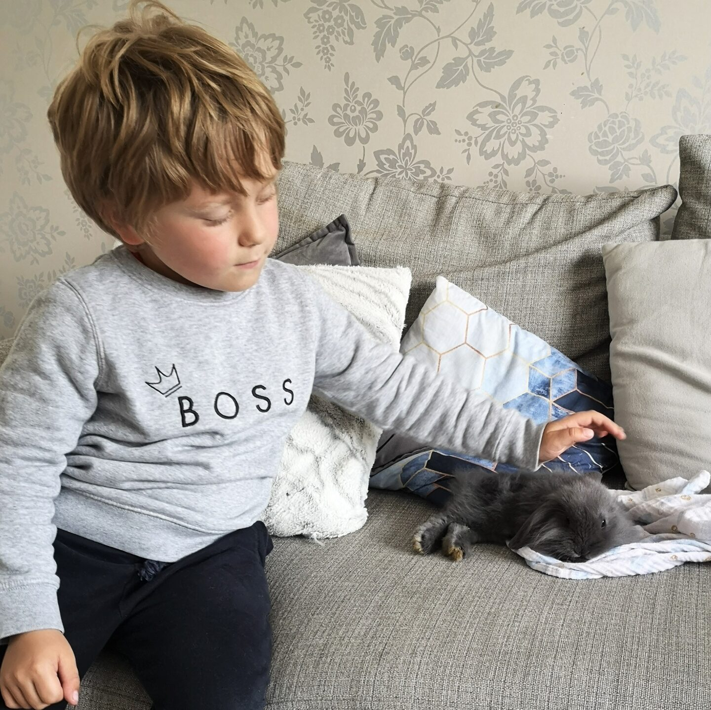 June 2021, Monthly Highlights, Summer 2021, The Frenchie Mummy, Rabbit Life