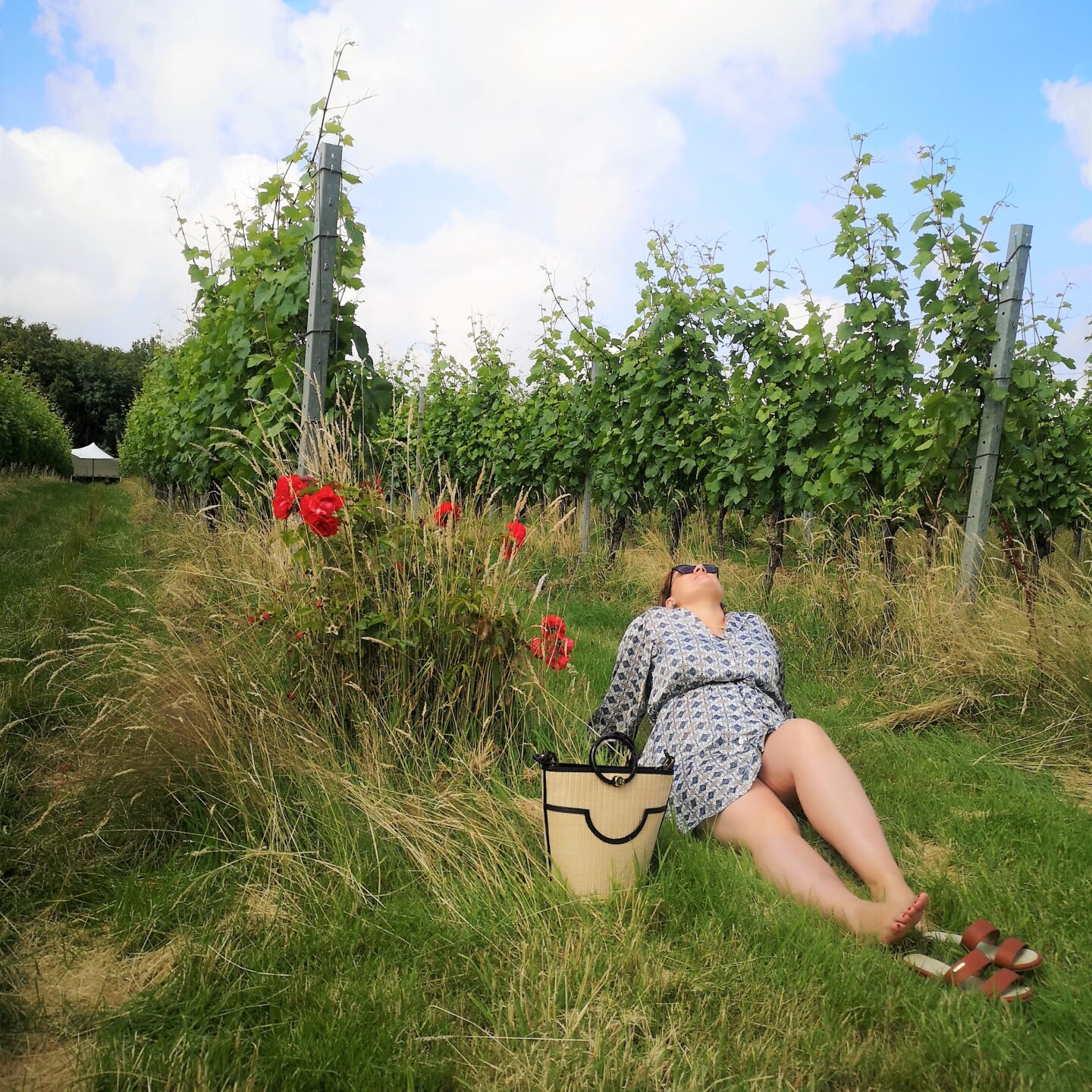 Picnic For Two With Gusbourne Wines, Gusbourne Vintage English Wines, English Sparkling Wines, Boutique English Winery, Things to do in Kent, Kent Life, Romantic Time, Appledore, Summer In Kent, Win, Giveaway, The Frenchie Mummy