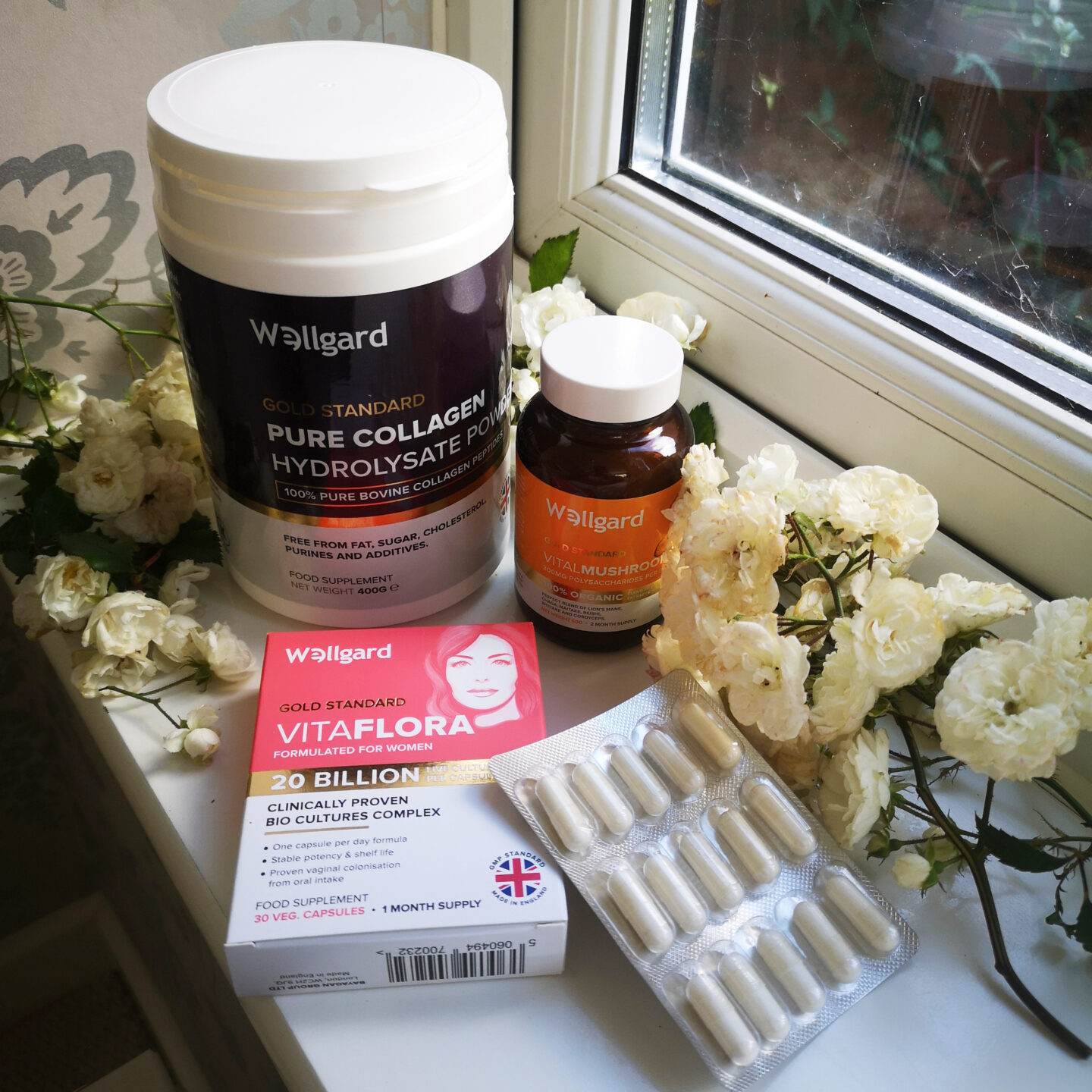 Wellgard Lot, Wellgard, Food Supplements, Probiotics, Wellness, Well-being, Collagen Powder, Giveaway, Win, Competition, the Frenchie Mummy