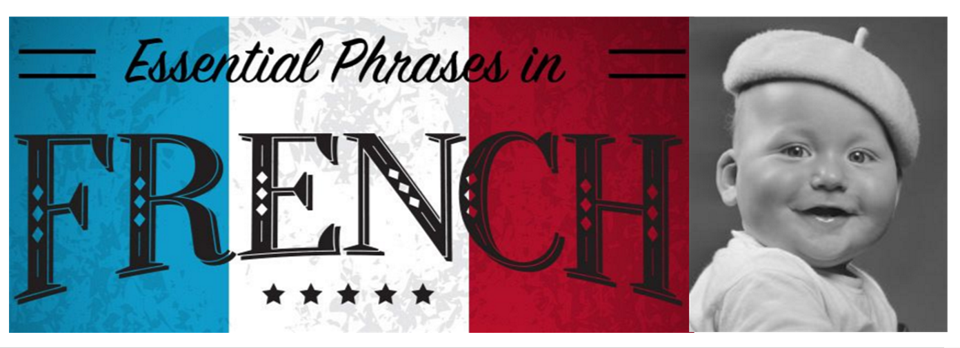 essential phrases in French