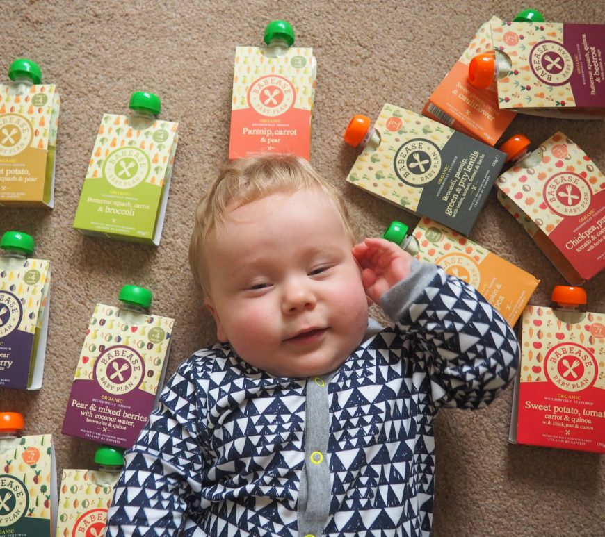 Babease Baby Food Review