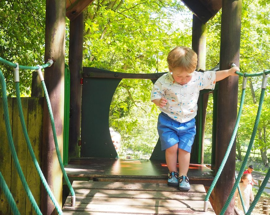 Port Lympne Wildlife Park Review, Family Day Out, Kent, Safari Truck, Review, The Frenchie Mummy