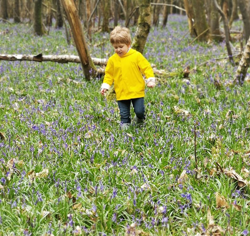April 2020, Monthly Highlights, The Frenchie Mummy, Lockdown, Ode to Nature, Kent, Walks